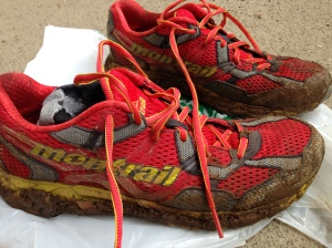Pic of Muddy Shoes